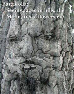Pareidolia: Seeing faces in hills, the Moon, trees, flowers, clouds etc.