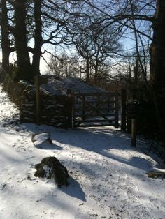 A little bit of snow doesn't stop a walk around Staveley