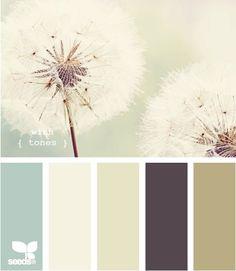 Dandelion palette  Confessions of a Graphic Design Student
