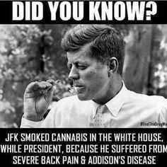 JFK Smoked cannabis in the white house While president because he suffered from severe back pain and Addisons disease Ganja, Jesse Ventura, Weed Quotes, 420 Quotes, Pain Quotes, Life Quotes, Severe Back Pain, Marijuana Facts, Marijuana Funny