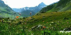 Nefes Almayı Özleyenler İçin Kaz Dağları
