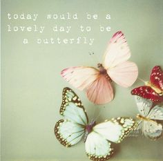 I love you Bubba Dick... Every time I see a yellow butterfly I think of you