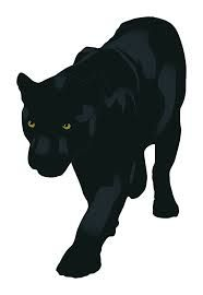 Black jaguar animal drawing - photo#11