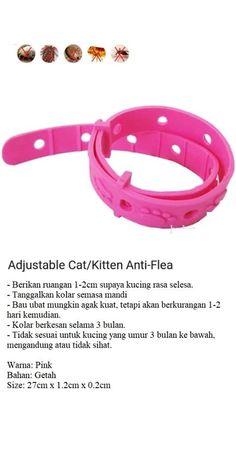 Kolar Kutu Kucing / Cats Flea  Tick Collar Training Providers, Cat Fleas, Flea And Tick, Cat Collars, Ticks, Cats, Gatos, Kitty Cats, Cat