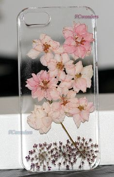 iphone 5 cases iphone 5s case Dried Dry Chrysanthemum Pressed Flower