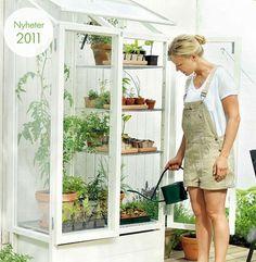 Bildresultat för bygg växthus av gamla fönster
