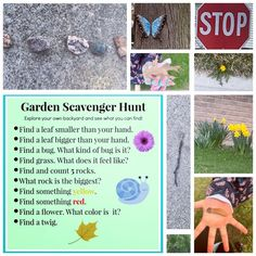 Instead of collecting all the items, I let my 4 year old take pictures of all of them! 4 Year Olds, Grass, Preschool, Backyard, Let It Be, Canning, Feelings, Garden, Pictures