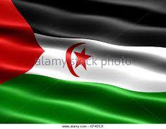 Western Sahara, Flag Vector