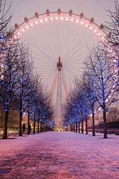 London Eye in Winter, London, England