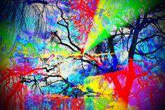 'Natur Abstrakt  31' von Walter Zettl bei artflakes.com als Poster oder Kunstdruck $22.17