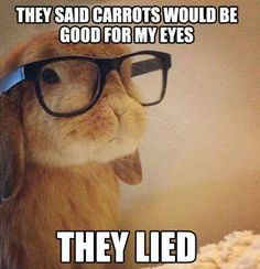 I eat carrots sometimes and I have glasses and contacts