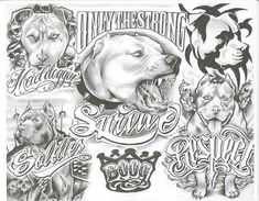 All About Art Tattoo Studio Rangiora. Upstairs 5 Good Street, Rangiora. 03 310 6669 or 022 125 7761. WHEN ONLY THE BEST WILL DO Member FFTC -NZ #thebestdragontattoos