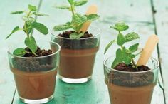 Chocolate mousse, chocolate soil? Love the look of plants but its food