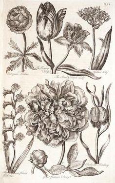 vintage wood cut flowers - Google Search