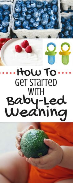 Thinking of getting started with baby-led weaning? This post is a must-read! Tons of tips and info for how to get started. All the baby-led weaning basics in one post! Thinking of getting started with baby-led wea Toddler Meals, Kids Meals, Toddler Food, Toddler Recipes, Baby First Foods, Baby Weaning, Weaning Toddler, Baby Led Weaning First Foods, Weaning Foods