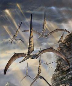 NYCTOSAURUS | Nyctosaurus.