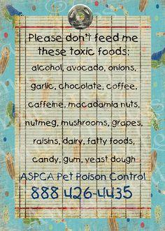Dog Pet Safety  Fridge Magnet  Keep our pets safe by AnnaCreates, $17.50
