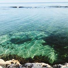 Snorkelling waters@Jamaica #jamaica #snorkle #vacation #bahiaprincipe #sun #vacay #montegobay #swim #beach