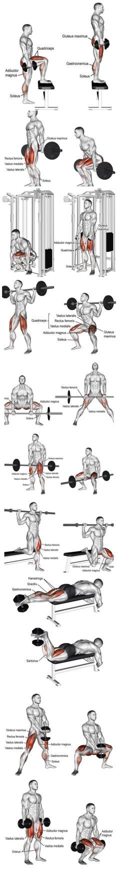 Turn Your Legs Into Tree Trunks. Push your body to its limits, training until you can't keep proper form anymore. 4. Use the full range-of-motion. Make sure that you're working the full range-of-motion of your legs. Again, it'll help you work through multiple muscle groupings, which is the most optimal way to train. Here's a basic workout with the focus being on ...