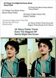 """I know more about Harry Potter!"" ""You do, do you? Well why don't you PROVE IT."""