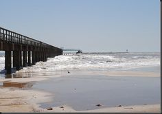 Bay City Lone Star State Corpus Christi Bbq
