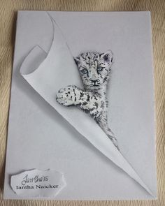 My animal drawings try to jump off the page - # . - Art - My animal drawings try to jump off the page # - Funny Drawings, 3d Drawings, Amazing Drawings, Drawing Sketches, Drawing Tips, Drawing Ideas, Drawing Hair, Sketching, Drawing Tutorials