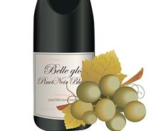 """Check out new work on my @Behance portfolio: """"Wine&wineglass"""" http://on.be.net/1N2ABjC"""