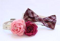 Burgundy Pink wedding dog collar - Bridesmaid