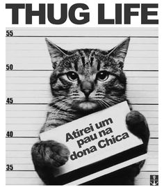 Arte BAD CAT de Cerqueira World | Disponível em camiseta, poster e moletom. Só na @toutsbrasil