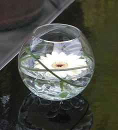Beautiful centerpiece - fishbowl with gerbera