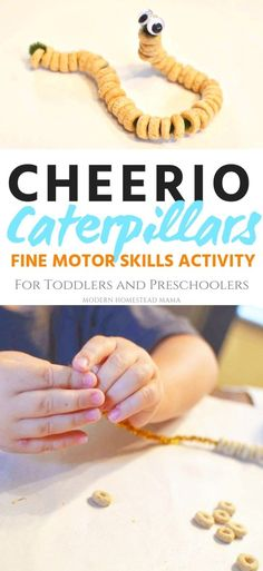 Cheerio Caterpillars (fine motor skills for toddlers and preschoolers) .Cheerio Caterpillars (fine motor skills for toddlers and preschoolers) . - the summer activities Nanny Activities, Fine Motor Activities For Kids, Motor Skills Activities, Toddler Learning Activities, Spring Activities, Infant Activities, Toddler Preschool, Toddler Crafts, Preschool Crafts