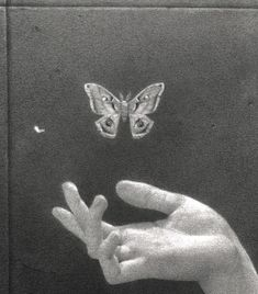 Keep your butterfly before the butter melted - Animals Tiktok Photo Wall Collage, Picture Wall, Aesthetic Art, Aesthetic Pictures, Black And White Aesthetic, Aesthetic Wallpapers, Art Inspo, Sketches, Drawings