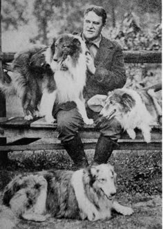 With Sigurdson, Jean and Gray Dawn (in front) - Albert Payson Terhune - Sunnybank Collies