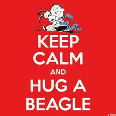 Keep Calm and Hug Snoopy.   See more at the links below : www.lifedecalshop.com or   www.lifelineseries.com