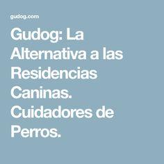 Gudog: La Alternativa a las Residencias Caninas. Cuidadores de Perros.