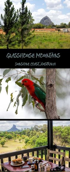 What to do in the Glasshouse mountains National Park, Sunshine Coast, Australia