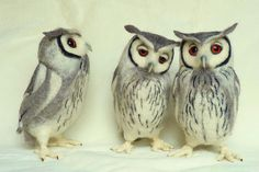 More needle felt owls by Helen Priem