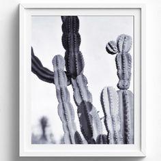 Interiors Trend: Cactus Style | sheerluxe.com