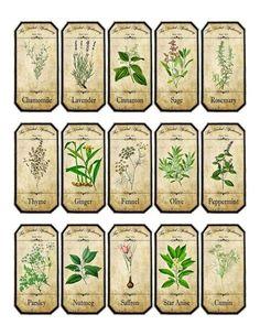 Vintage inspired assorted herb spice food tea bottle jar labels stickers #Handmade #Vintage                                                                                                                                                     Más