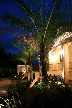 Outdoor Lighting In Tampa Bay Can Be Set To Make It Look Like You Are Home