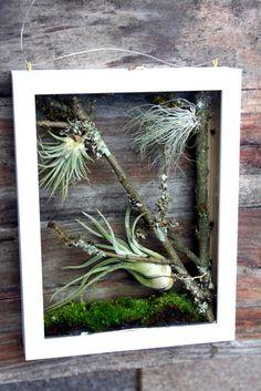 Basteln mit Bilderrahmen: Florales Fensterbild aus zwei Rahmen / Magazin
