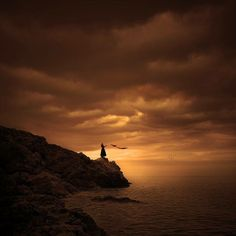 Whoever brought me Here will have to take me Home. ~Rumi
