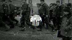 Tural Ali & Sami - Qartal l Qarabağ Muğam (ft.