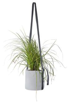 hanging pot 10 L paris zinc - bacsac