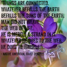 """""""Things are connected. Whatever befalls the earth befalls the sons of the earth. Man did not weave the web of life. He is merely a strand in it. Whatever he does to the web, he does to himself."""" – Native American, Chief Seattle ( inspirational motivational spirituality spiritual sufi sufism wisdom love poetry poem rumi quotes quote )"""