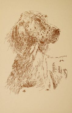 English Setter: Dog Art Portrait by Stephen Kline - art drawn entirely from the words English Setter. drawdogs.com : drawdogs.com http://drawdogs.com/product/dog-art/english-setter-dog-portrait-by-stephen-kline/ His collectors number in the thousands from over 20 countries and every state in the US. Kline's dog art has generated tens of thousands of dollars for dog rescues worldwide.