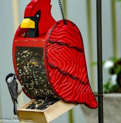 Watching backyard birds gives my husband and I a great deal of pleasure. Having a variety of food gets us a nice variety of birds. Types Of Mixtures, Finch Feeders, Downy Woodpecker, Black Capped Chickadee, Different Birds, Pet Fish, How To Attract Birds, Humming Bird Feeders