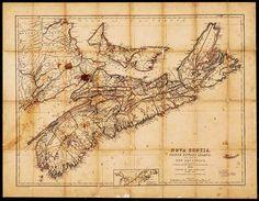 1854 map of Nova Scotia and Prince Edward Island Island Map, Oak Island, Small Island, Acadie, Family Roots, Prince Edward Island, New Brunswick, Natural Phenomena, Grade 2