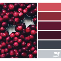 design seeds | search | for all who ♥ color ❤ liked on Polyvore featuring design seeds, backgrounds and color