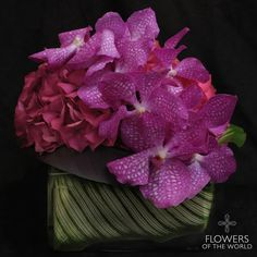 "Summer Collection 2015 ""Duets"" Vanda Orchids & Hydrangea Flowers of the World, NYC www.flowersoftheworld.com"